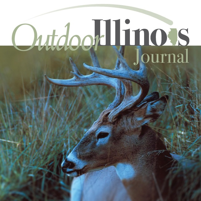 Outdoor Illinois text over image of a deer