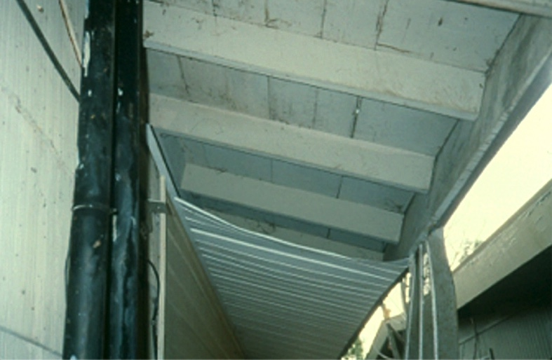 A raccoon removed the lining of this soffit.